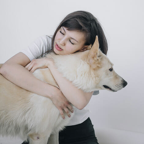 Dog Being Hugged By Owner